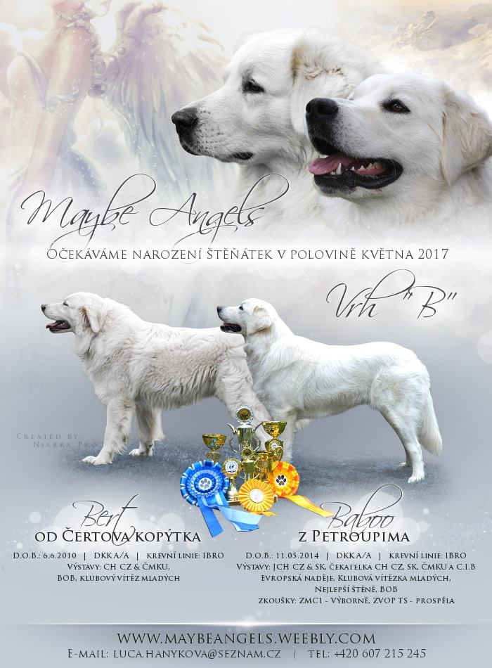 maybe vrh